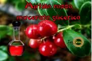 Macerato Glicerico di Mirtillo Rosso