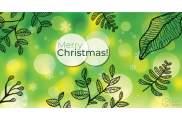 Buono Regalo Natale - 2 - Verde