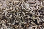 Alcaravea Grano - Cumino dei prati -  Semi di Carvi