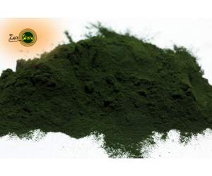 Alga Clorella in polvere - Biologica