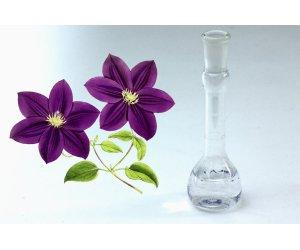 Olio Fragranza Viola