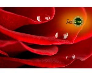 Aroma di Rose idrosolubile