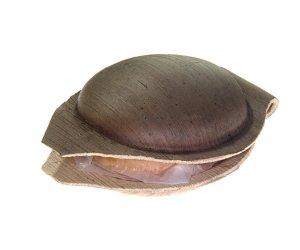 Sapone Alla Curcuma - Tuna Aromatic