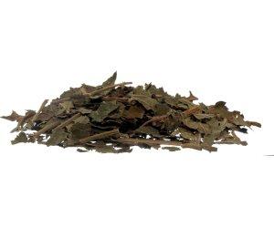 Ribes Nero Foglie - Diuretico e Depurativo - Tisana/Infuso