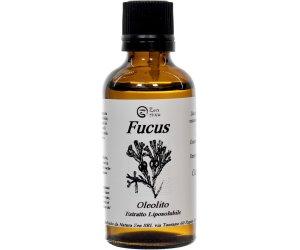 Oleolito di Fucus - Estratto Liposolubile