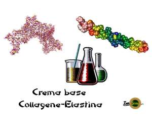 crema base collagene elastina