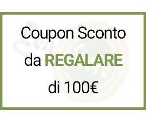 Coupon Sconto/Buono regalo da 100 EUR