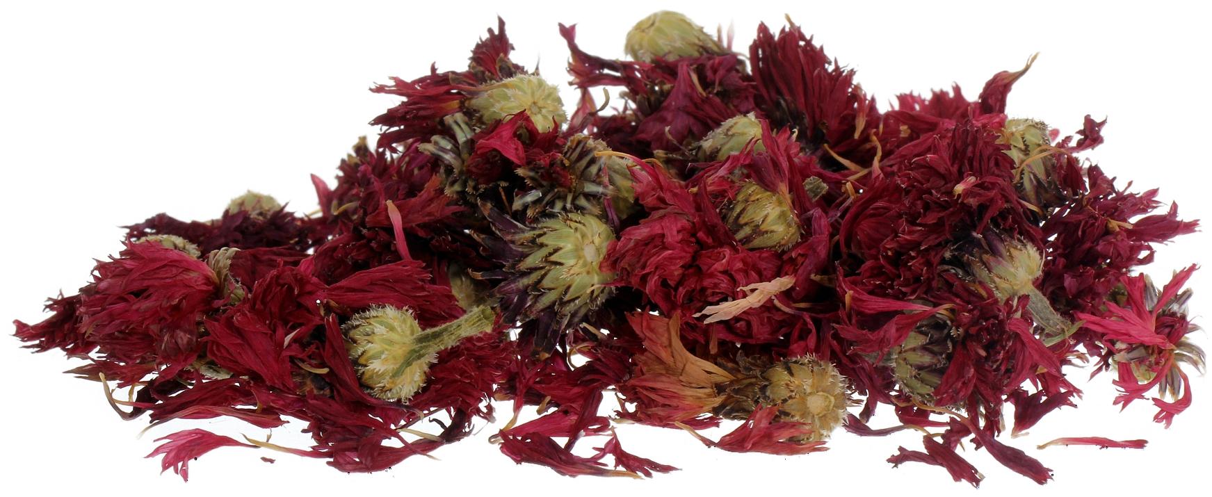 Semi naturali Semi di semi di Fiordaliso Semi di fiori OO55