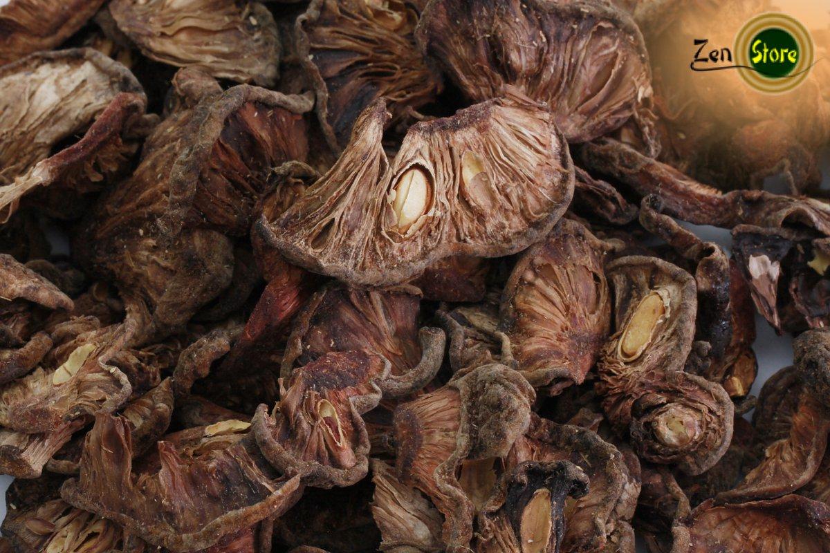 estratto di garcinia cambogia con olio di cocco